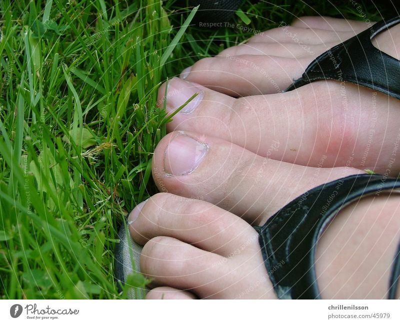 Feet in grass Fuß