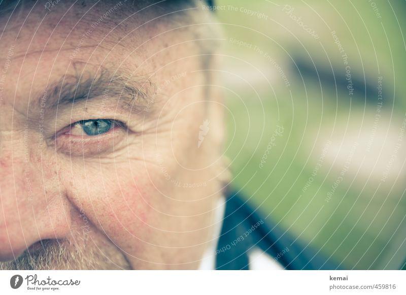 Look me in the eye, say that again. Mensch maskulin Mann Erwachsene Männlicher Senior Vater Leben Auge Wange 1 45-60 Jahre 60 und älter Blick blau grün