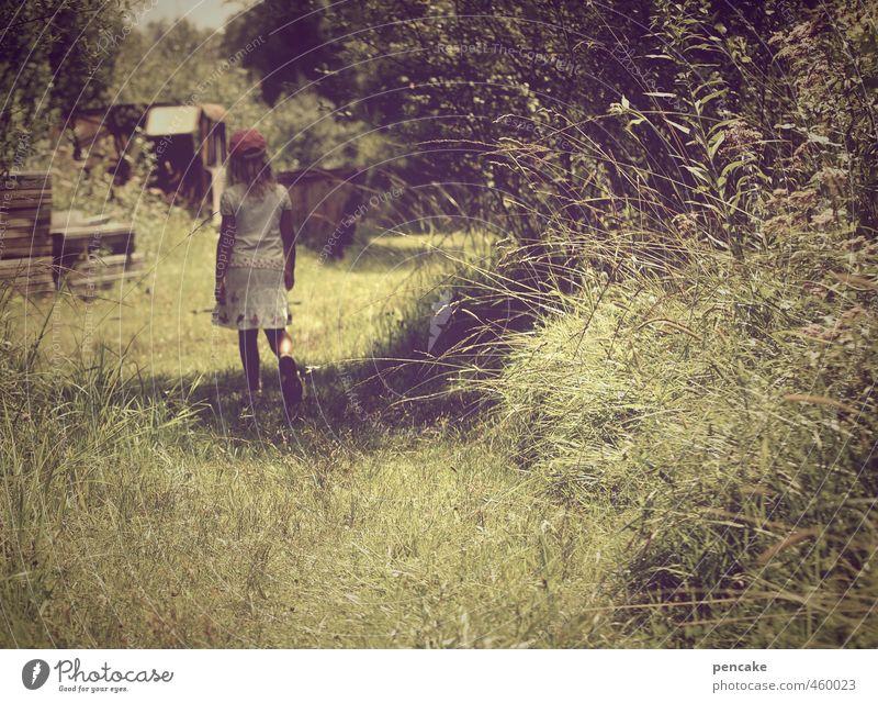 das geheimnis Mädchen 1 Mensch 8-13 Jahre Kind Kindheit Natur Landschaft Pflanze Sommer Wiese Wald Zeichen beobachten Bewegung entdecken träumen Mut