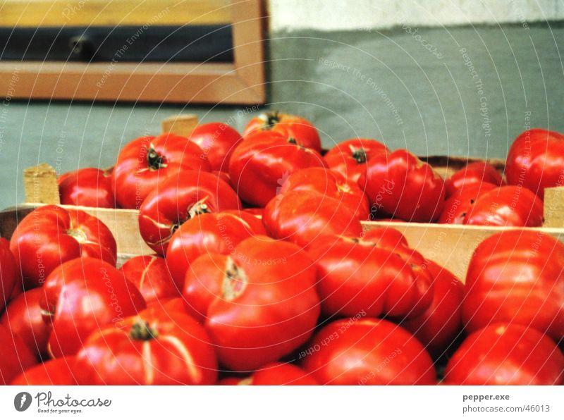 Pasta Equipment rot Ernährung Gemüse Tomate Fruchtfleisch Ketchup