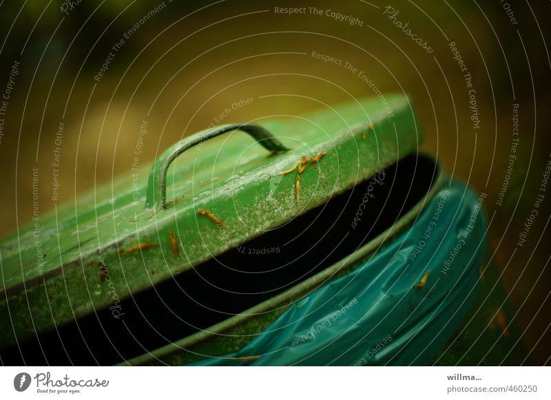 heul doch! Müllbehälter Müllsack blau braun grün Umweltverschmutzung Griff offen Verschlussdeckel Farbfoto Außenaufnahme Menschenleer Textfreiraum oben