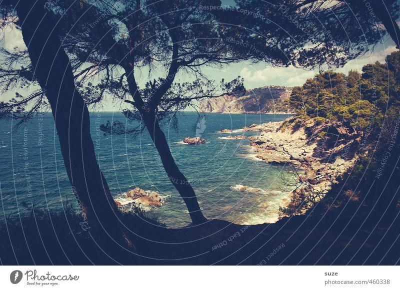Küstenblick Ferien & Urlaub & Reisen Strand Meer Berge u. Gebirge Natur Landschaft Schönes Wetter Wärme Baum Bucht fantastisch Fernweh Einsamkeit Idylle