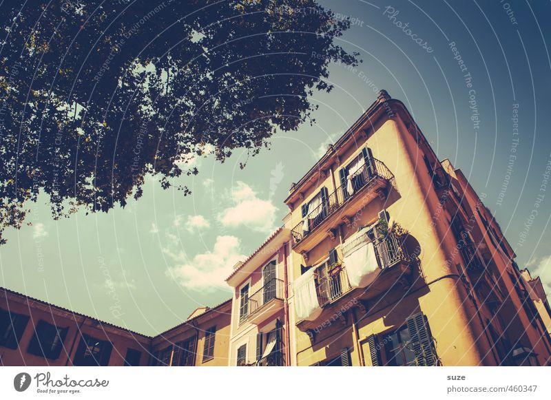 Den Tag begrüßen Ferien & Urlaub & Reisen alt Stadt Baum Haus Fenster Wärme Reisefotografie Gebäude Architektur Fassade Wohnung Häusliches Leben einzigartig