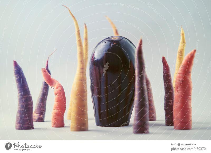 Mit Schnitt Lebensmittel Gemüse Möhre Obergine Ernährung Bioprodukte orange frisch Gesundheit Vegetarische Ernährung exotisch mehrfarbig Reflexion & Spiegelung