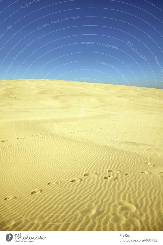 Einmal durch die Wüste, bitte! Natur Ferien & Urlaub & Reisen blau Sommer Sonne Landschaft Ferne gelb Umwelt Wärme Sand Horizont Erde Klima Tourismus