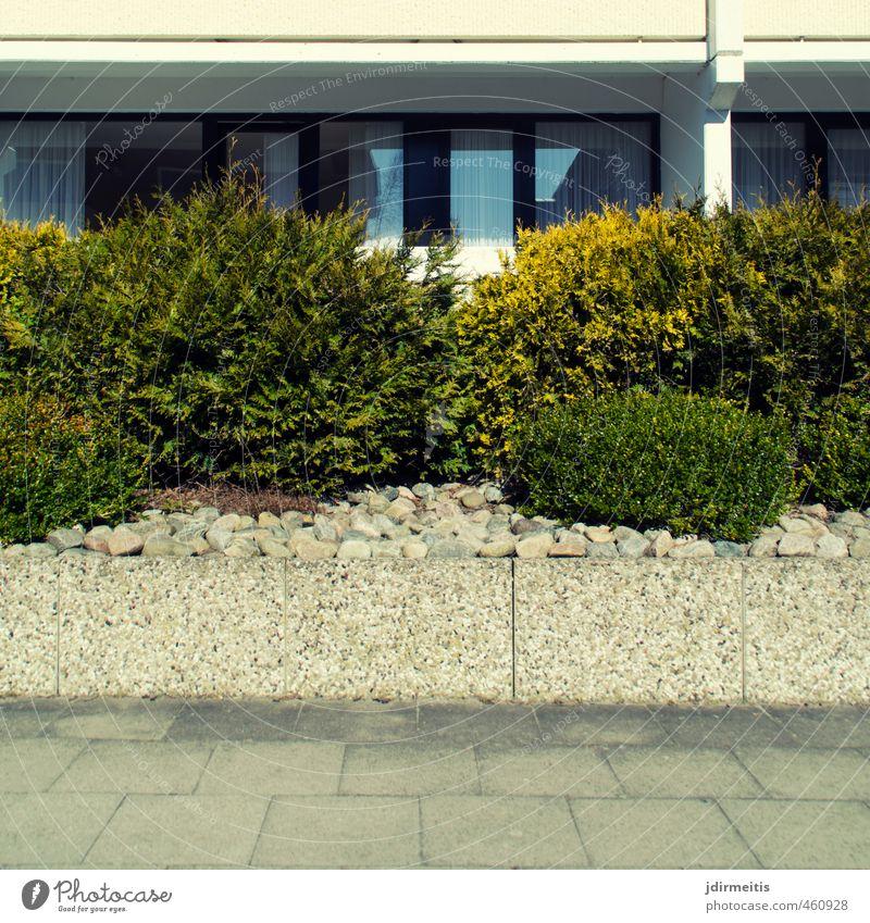 Architektur Haus Pflanze Sträucher Grünpflanze Stadt Menschenleer Hochhaus Bauwerk Gebäude Mauer Wand Fassade Balkon Fenster Stein Beton Glas Häusliches Leben