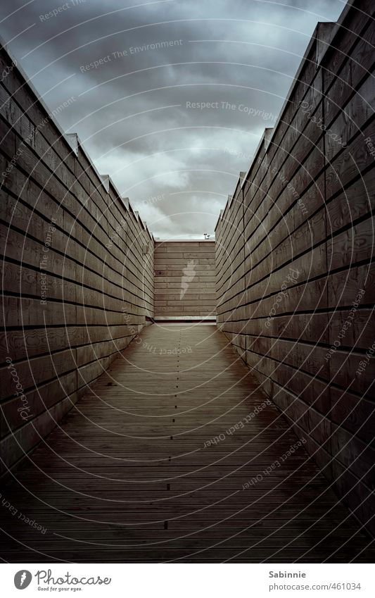 Kein Licht am Ende des Tunnels II Schottland Bauwerk Gebäude Mauer Wand trist braun Schutz Angst Zukunftsangst Holzbrett eng einengen ausweglos bedrohlich