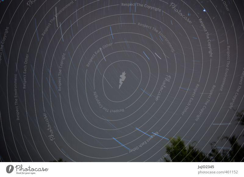 Star trail Natur Landschaft Luft Himmel nur Himmel Wolkenloser Himmel Nachthimmel Stern Sommer Schönes Wetter blau schwarz weiß Nachtaufnahme Langzeitbelichtung