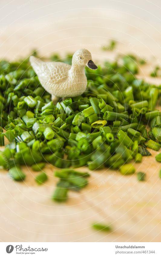 Gans im grünen Bereich Lebensmittel Kräuter & Gewürze Schnittlauch Ernährung Bioprodukte Gesunde Ernährung Häusliches Leben Küche Tier Graugans 1