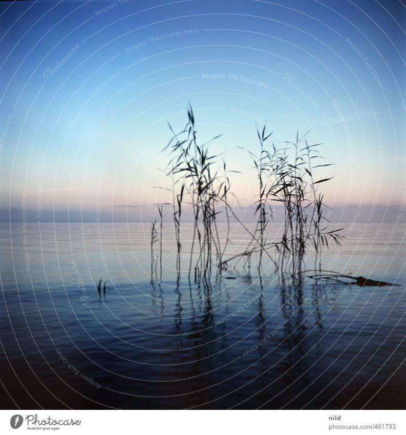 Roadtrip 2013 Natur blau Wasser Pflanze Sommer Landschaft Strand Umwelt Küste Horizont Wetter Klima Sträucher Seeufer Wolkenloser Himmel Nachthimmel