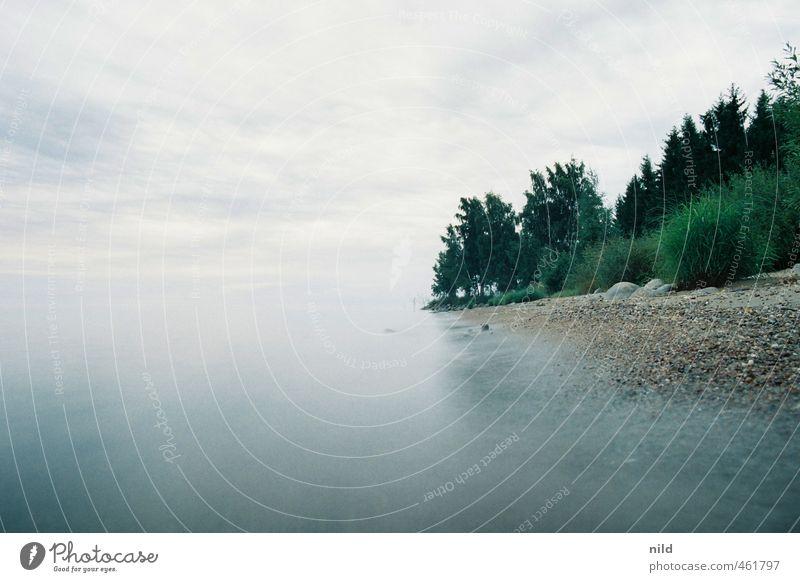 Roadtrip 2013 Umwelt Natur Landschaft Pflanze Wasser Himmel Wolken Horizont Sommer schlechtes Wetter Nebel Baum Sträucher Wellen Küste Seeufer blau grau