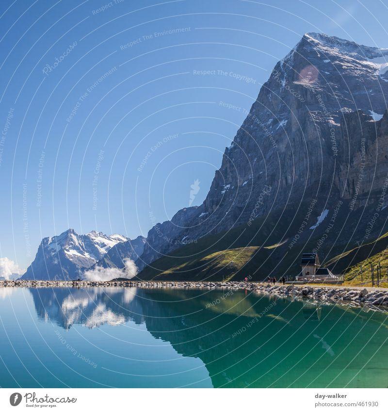 Eiger Nordwand Natur Landschaft Urelemente Wolkenloser Himmel Sommer Schönes Wetter Schnee Gras Felsen Alpen Berge u. Gebirge Gipfel Schneebedeckte Gipfel