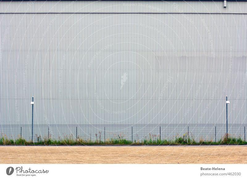 Tschüss, liebe Anne! Bitte Hindernisse einfach überspringen! Haus Industrie Handel Gras Stadtrand Bauwerk Gebäude Mauer Wand Fassade Metall Streifen