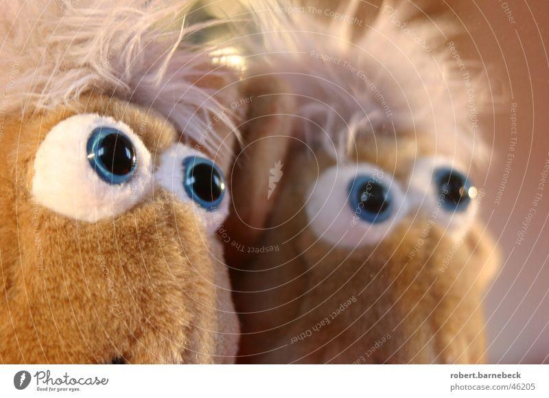 Können diese Augen lügen? Tier Auge Stoff Spiegel Gesichtsausdruck Anschnitt Spiegelbild Pupille Stofftiere Plüsch Glubschauge Puppenauge
