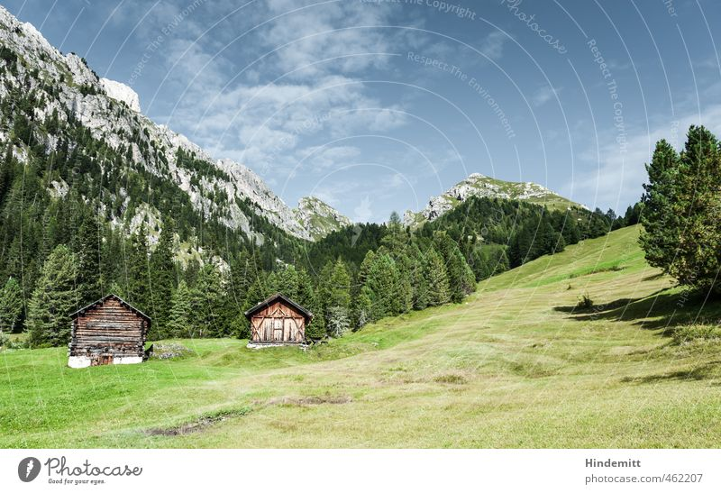 Alpine Eigenheime: Vorderansicht Himmel Ferien & Urlaub & Reisen blau grün Sommer Baum ruhig Wolken Wald Berge u. Gebirge Wiese Gras Gebäude grau Felsen braun