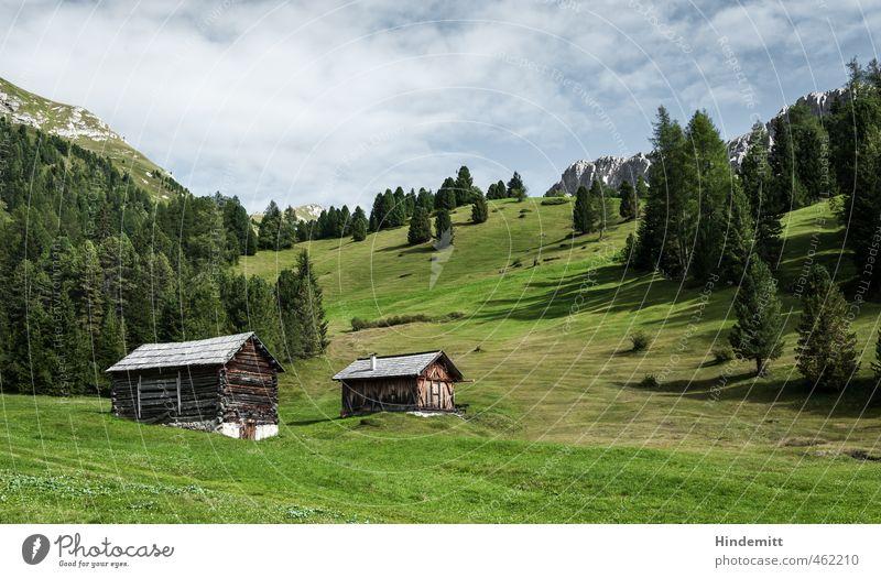 Alpine Eigenheime: Halbprofil Himmel Ferien & Urlaub & Reisen blau grün Sommer Baum Erholung ruhig Wolken Wald Berge u. Gebirge Wiese Gras Gebäude grau Felsen