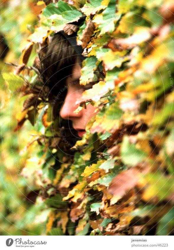 Der Junge im Busch flüchtig Blatt grün gelb analog Dia Tiefenschärfe Außenaufnahme Gesicht verstecken geschlossen