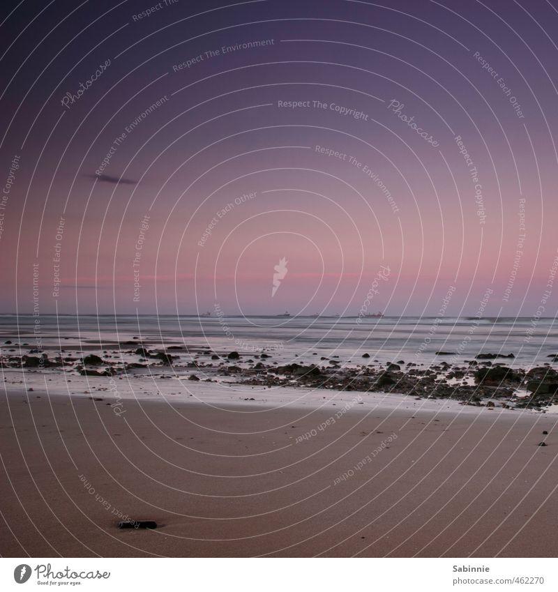 Aberdeen Beach Umwelt Natur Erde Sand Himmel Wolkenloser Himmel Sonnenaufgang Sonnenuntergang Sommer Wetter Schönes Wetter Wellen Küste Nordsee Meer blau