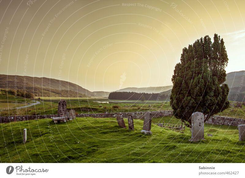 [Skye 15] Clearance Villages Umwelt Natur Landschaft Urelemente Himmel Sonne Klima Schönes Wetter Pflanze Baum Hügel Isle of Skye Schottland Dorf Menschenleer