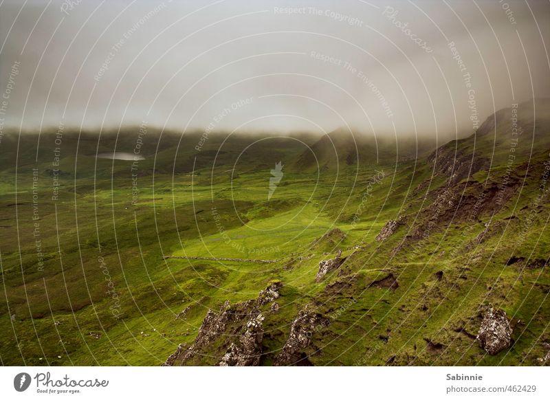 [Skye 16] Nebel von rechts, Sonne von links Umwelt Natur Landschaft Urelemente Erde Himmel Wolken Klima Wetter Schönes Wetter schlechtes Wetter Pflanze Gras