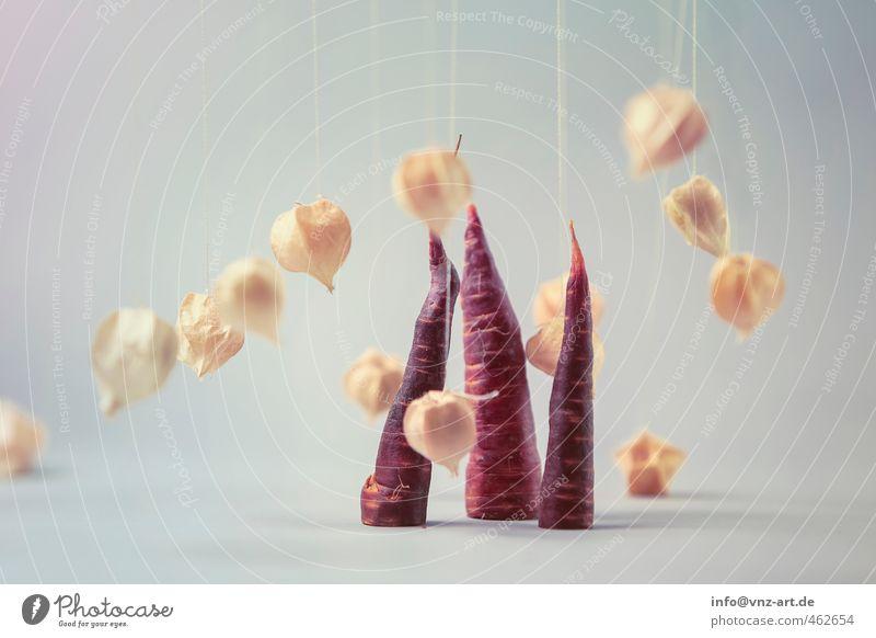 Schnitt2 außergewöhnlich Lebensmittel Frucht ästhetisch Ernährung violett Gemüse Bioprodukte Schweben Anschnitt Nähgarn Vegetarische Ernährung Möhre luftig