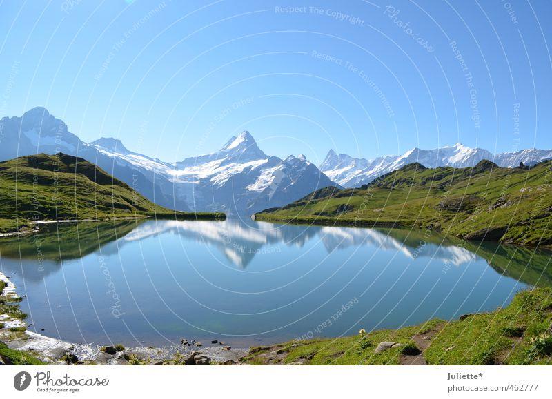 Bergspiegelung Natur Landschaft Erde Wasser Himmel Wolkenloser Himmel Sommer Wetter Schönes Wetter Gras Berge u. Gebirge Schweiz Gipfel Gletscher See Bergsee