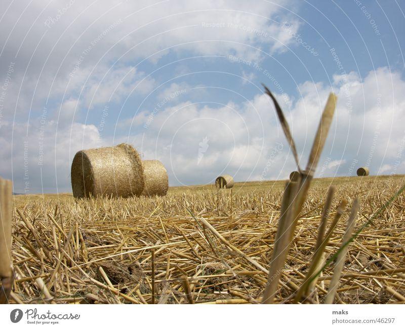 sommerschluss Feld Stroh Strohballen gelb Wolken Himmel blau Halm