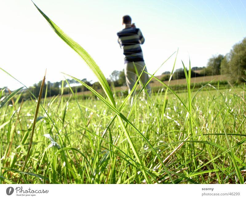 Fototour im Grünen Himmel Natur Jugendliche blau Freiheit Gras hell Fotografie Hintergrundbild Interesse Froschperspektive Vordergrund