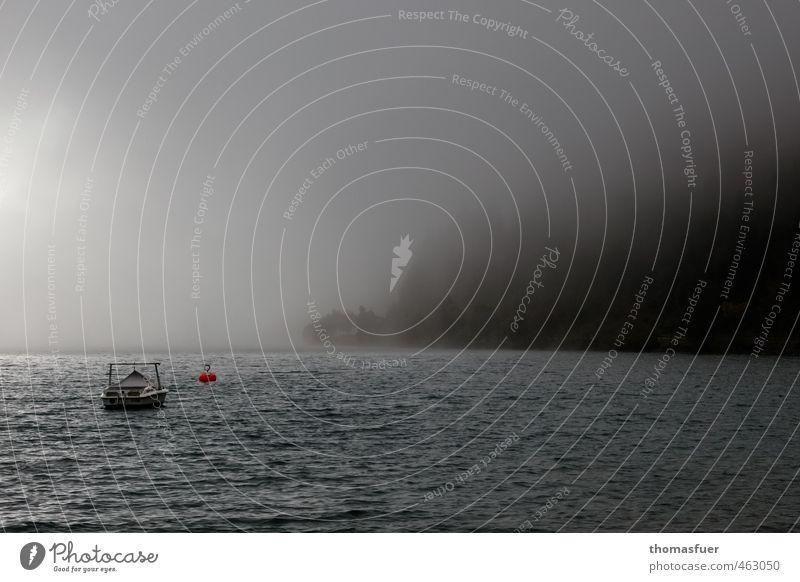 Achensee - Grusel Ferien & Urlaub & Reisen Baum Einsamkeit Wolken Wald dunkel Berge u. Gebirge Herbst See Horizont Regen Wellen Nebel Ausflug Alpen Romantik