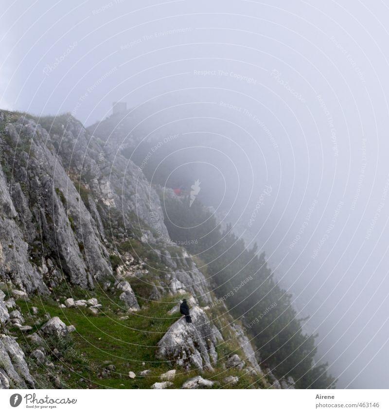 Hat der Berg ein' Hut... Natur grün Einsamkeit Landschaft Wolken Tier dunkel kalt Berge u. Gebirge grau Vogel Felsen Wetter Nebel gefährlich bedrohlich