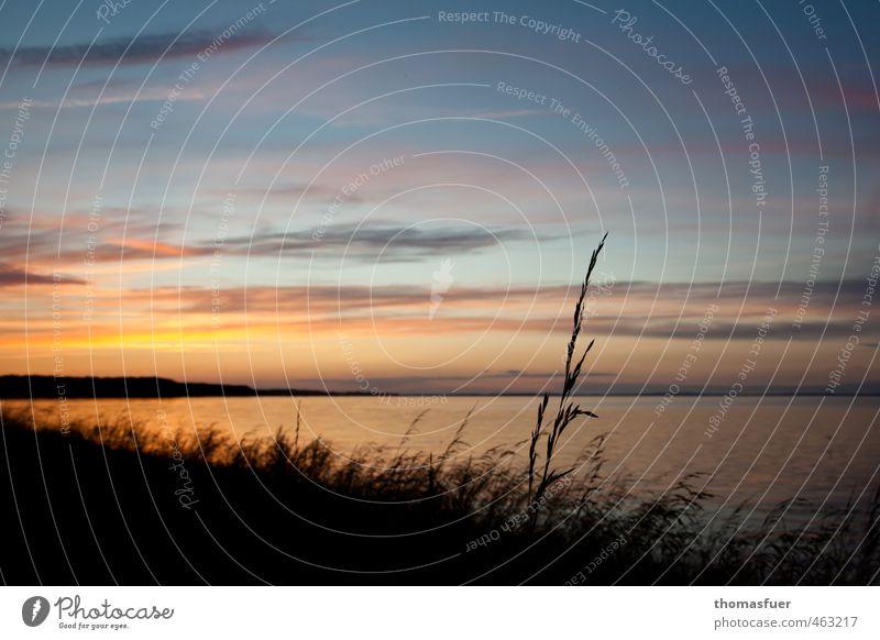 """""""Der Sommer war groß...."""" Ferien & Urlaub & Reisen Ferne Freiheit Sommerurlaub Sonne Strand Meer Insel Wellen Schönes Wetter Gras Sträucher Küste Bucht Fjord"""