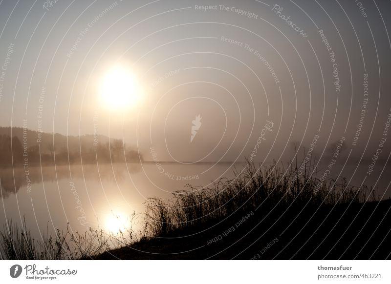 dream on wandern Natur Landschaft Erde Luft Wasser Wolkenloser Himmel Horizont Sonnenaufgang Sonnenuntergang Herbst Schönes Wetter Nebel Baum Gras Sträucher