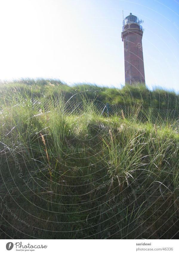 Im September Himmel Sonne grün ruhig Einsamkeit Wiese Stranddüne Leuchtturm Norderney