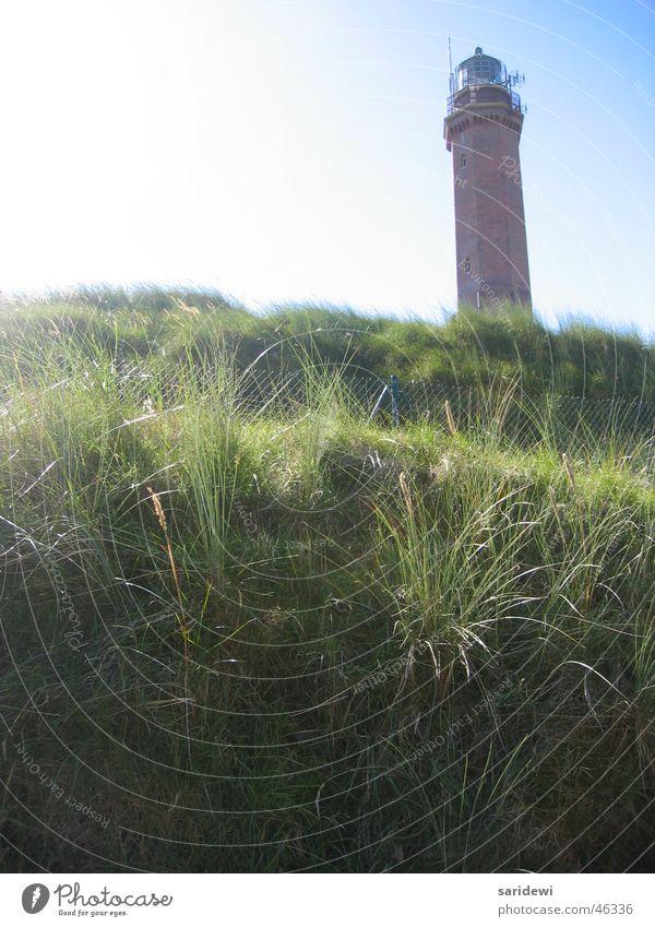 Im September Leuchtturm Wiese Norderney grün Sonnenstrahlen ruhig Einsamkeit Stranddüne Himmel