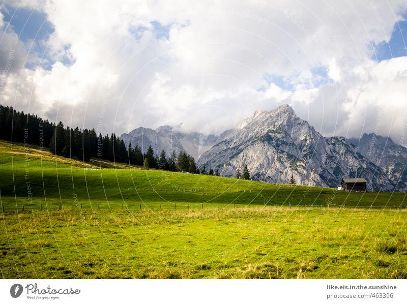 postkartengrüße aus tirol: 1€ Natur Ferien & Urlaub & Reisen Sommer Baum Erholung ruhig Landschaft Ferne Wald Umwelt Berge u. Gebirge Gras Freiheit Tourismus
