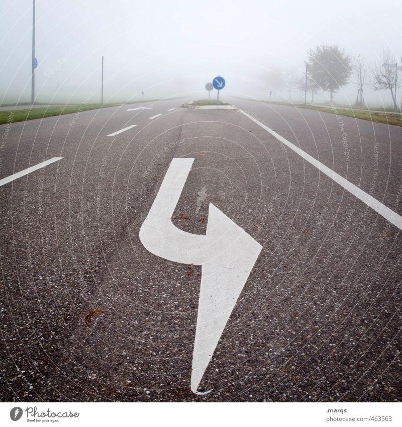 Turn Ausflug Klima Nebel Baum Verkehr Verkehrswege Straßenverkehr Zeichen Schilder & Markierungen Linie Pfeil fahren einfach kalt Sicherheit Perspektive
