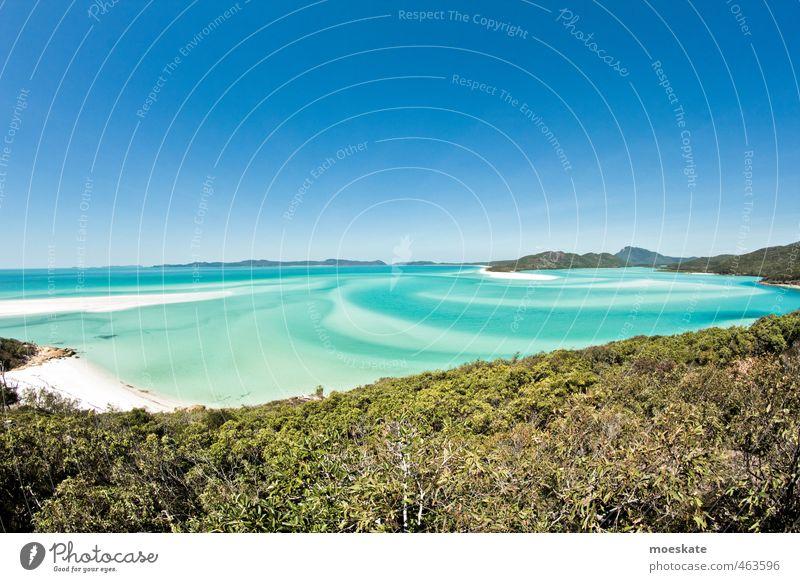 Whitsunday Island - Whitehaven Beach Himmel Wolkenloser Himmel Horizont Sommer Schönes Wetter Strand Bucht Meer Pazifik Karibisches Meer Pazifikstrand Insel