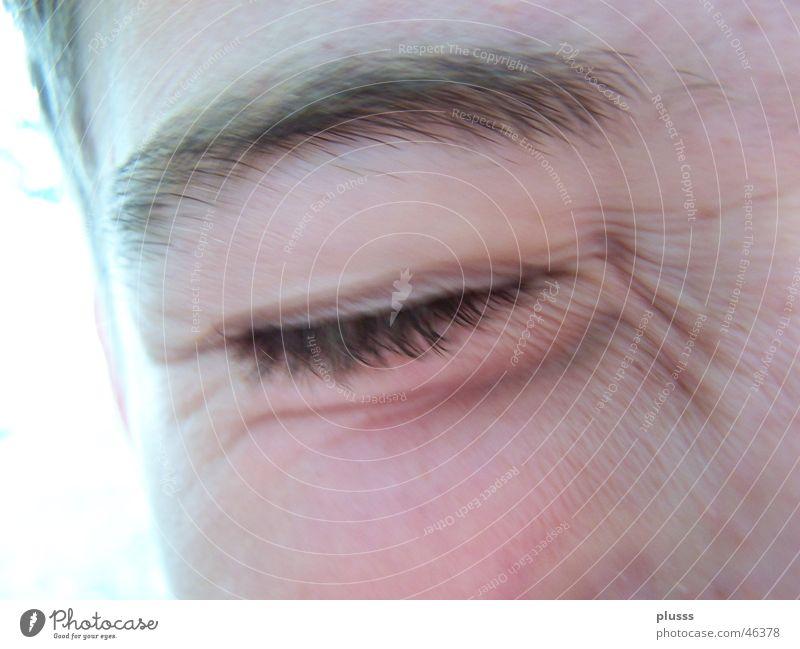 geblendet Auge hell geschlossen blenden Augenbraue drücken grell