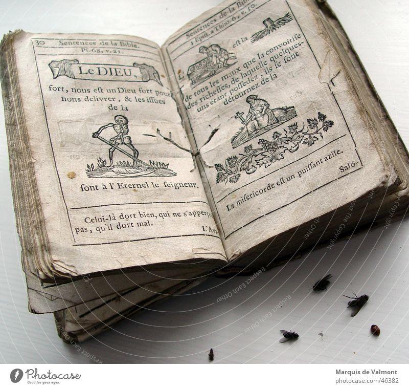 Le Dieu Buch Buchdruck Holzschnitt Religion & Glaube Bibel Stillleben Vergänglichkeit Papier Insekt Sensenmann Skelett Katholizismus Bibliothek Käfer Schiffsbug