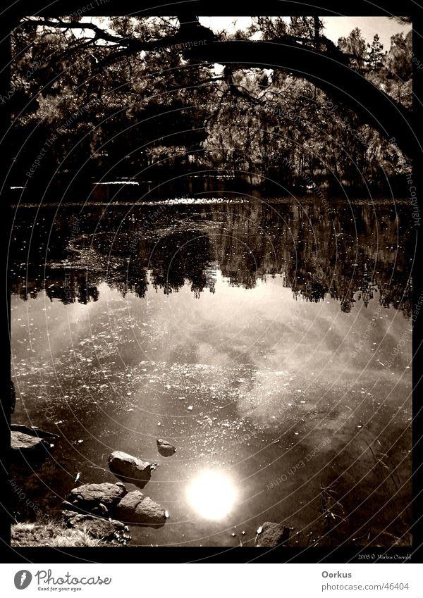 Spiegelung Sonne See Wasseroberfläche