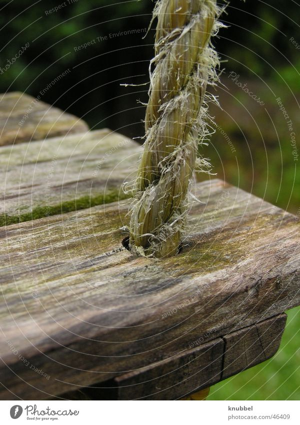 Schaukeln Garten Holz Seil Holzbrett Spielplatz