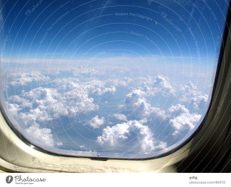 über den Wolken Ferien & Urlaub & Reisen Fenster kalt Luft Glas fliegen hoch Flugzeug Luftverkehr Niveau