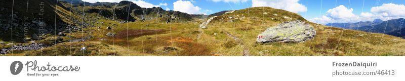 Kröndlhornpanorama Himmel Blume Wolken Berge u. Gebirge Wiese groß Alpen Panorama (Bildformat) Alm Kitzbüheler Alpen Bundesland Tirol Pflanze Berg Kröndlhorn