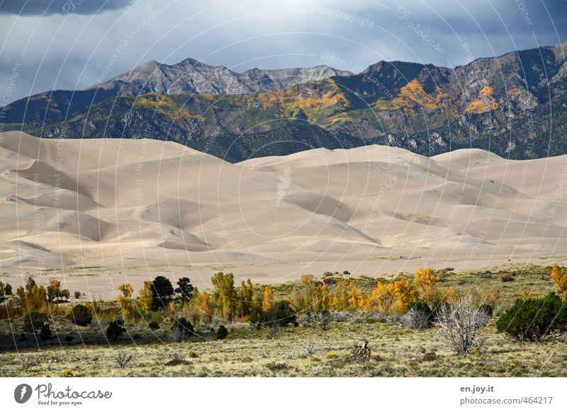Windkanal Natur Ferien & Urlaub & Reisen Pflanze Landschaft Ferne gelb Umwelt Berge u. Gebirge Gras Sand außergewöhnlich Wetter Klima Sträucher Abenteuer USA