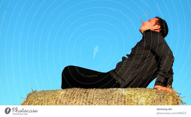endlich Sommer Mann Sonne blau Auge Erholung Haare & Frisuren Mund lustig Nase sitzen Ohr liegen Freizeit & Hobby Hose Hemd