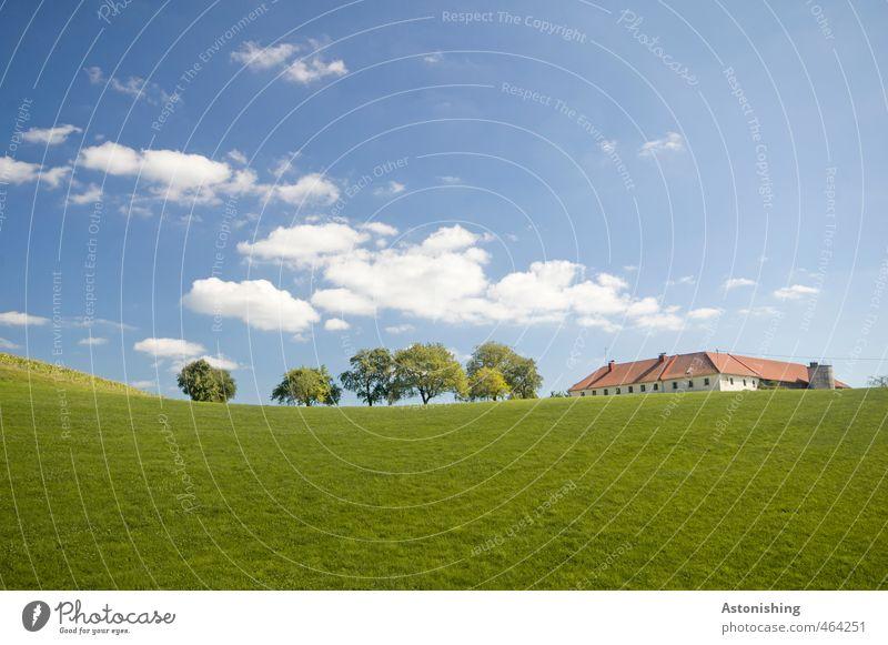 Bauernhof Umwelt Natur Landschaft Pflanze Himmel Wolken Horizont Sommer Wetter Schönes Wetter Wärme Baum Gras Blatt Wiese Hügel Haus Bauwerk Gebäude Mauer Wand