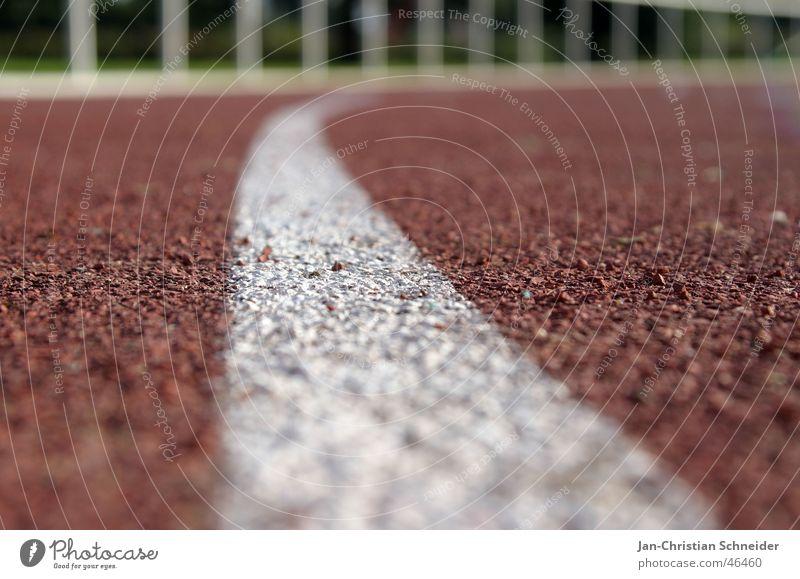 Laufbahn 3 weiß Sonne rot Sport Linie laufen Eisenbahn Bodenbelag Streifen Reihe Sportveranstaltung Sportler Lebenslauf Untergrund