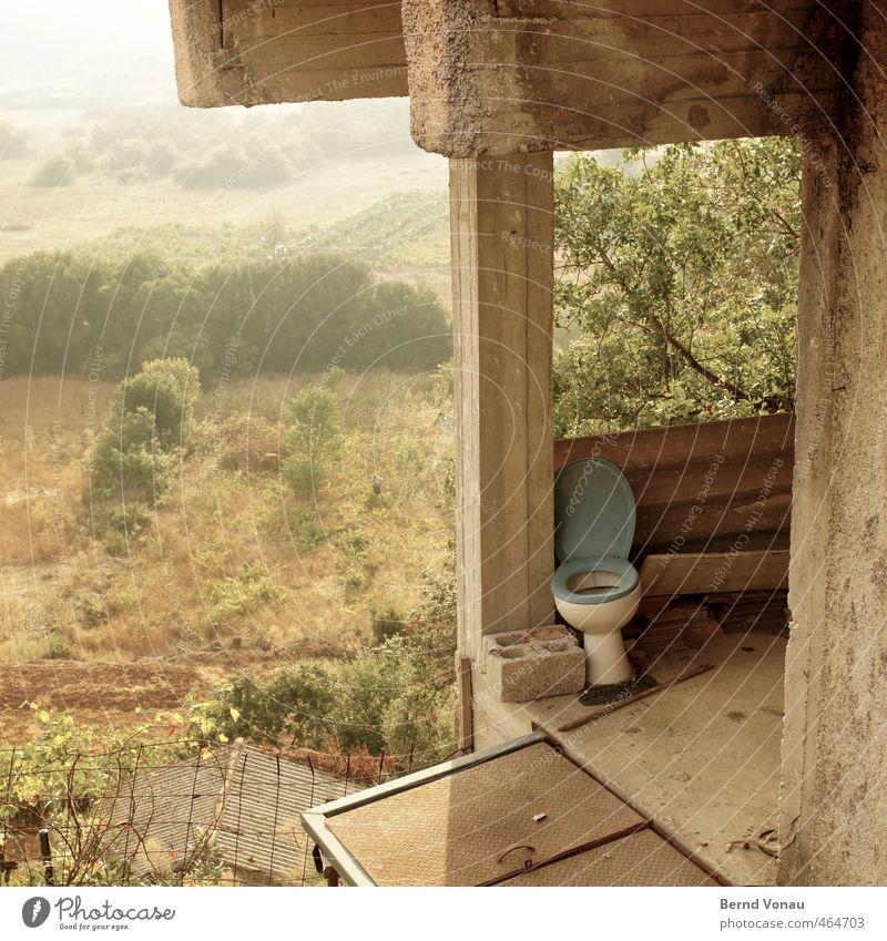 Stilles Örtchen grün weiß Baum grau Stein oben Sträucher Aussicht Beton Baustelle Dach Zaun Dorf Toilette Dunst Toilette