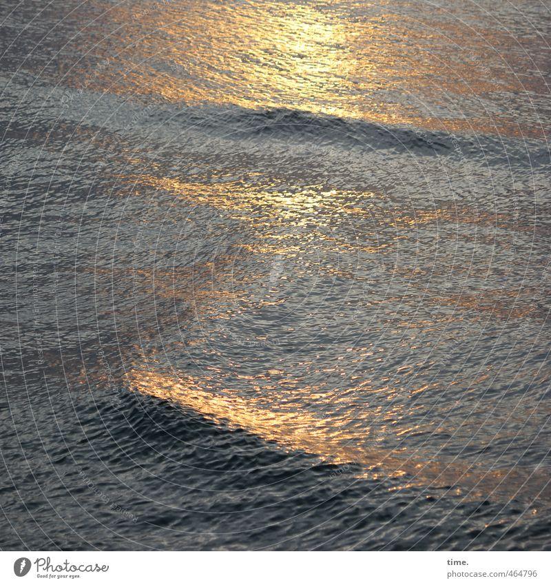 Lebenslinien #71 Umwelt Wasser Sonnenaufgang Sonnenuntergang Schönes Wetter Wellen Ostsee maritim Flüssigkeit nass Heimweh Fernweh Einsamkeit Bewegung Freiheit