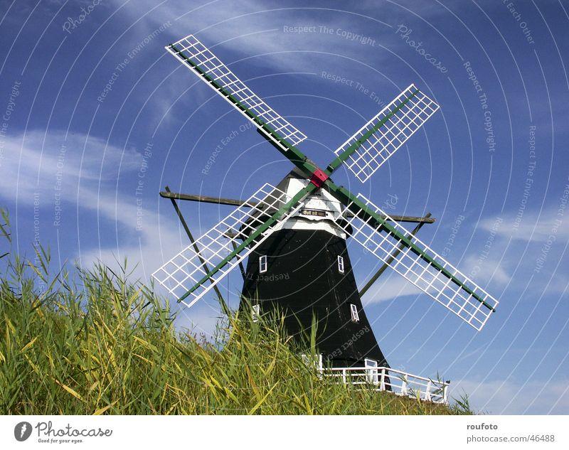 XMT30147 Mühle Windmühle historisch Müller Mehl zerkleinern Deich Pellworm Nordfriesland Getreide Insel Nordsee